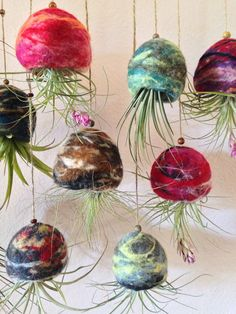 Wholesale Hand Felted Wool Pots Air Plant by urbanfarmersmarket