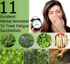 11 Excellent Herbal Remedies To Treat Fatigue Successfully | Heart Craft