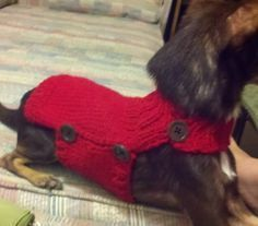 I decided to add another dog sweater to my repertoire. It's such a pain in the butt to get a pullover sweater on my twitchy jumpy little c...