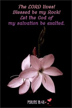 The Lord lives! Blessed be my my rock! Let the God of my salvation be exalted. - Psalm 18:46