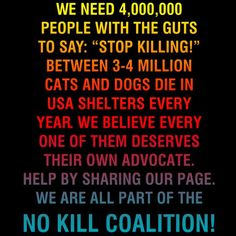 Share this page and help put an to KILL SHELTERS and GAS CHAMBERS USED TO KILL OUR FURCHILDREN!