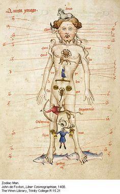 Zodiac Man: Man as Microcosm in the Medieval Worldview [Homo Signorum; Medieval Medicine and Astrology; Medieval Manuscript, Medieval Art, Illuminated Manuscript, Astrology Numerology, Astrology Zodiac, Renaissance Image, Relationship Astrology, Tarot, Anatomy Art