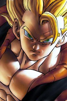 Goku + Vegeta = Gogeta #dbz