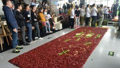 Young man proposes with 99,999 chili peppers instead of diamonds