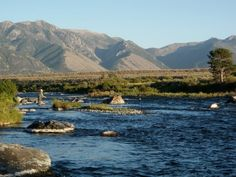 fly fishing the Madison River, Montana 09/08/12