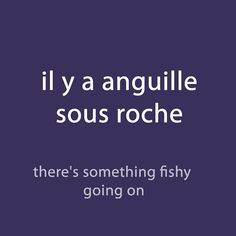 #French expression of the day: il y a anguille sous roche- there's something fishy going on Listen to the pronunciation via downloadable audio in the weekly newsletter (link in the page bio)