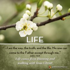 Life comes from knowing and walking with Jesus Christ!