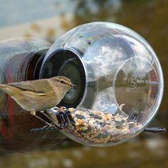 Born in Sweden bird feeder house 7340030 Pascal Charmolu