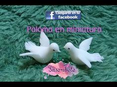 Paloma miniatura ((18 de agosto 2018)) - YouTube