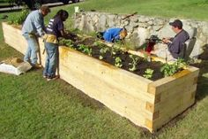 Learn how to properly plant an elevated garden This Old House landscape contractor Roger Cook