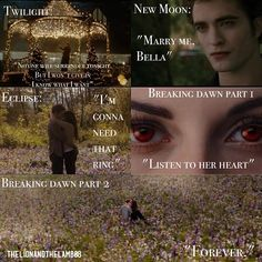 What should i include in a essay on a book? (twilight)?