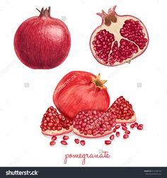 Juicy delicious hand drawn pomegranate apple, art, background, banana, berries, cherry, closeup, coconut, color, dessert, diet, drawing, drawn, food, fresh, fruit, green, group, hand, health, healthy, isolated, juice, juicy, leaf, macro, natural, nature, orange, organic, papaya, peach, pear, piece, pineapple, pomegranate, realistic, ripe, seed, sketch, summer, sweet, tropical, vegetarian, vitamin, watercolor, watermelon, white, hand drawn, vegetable