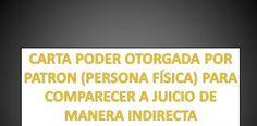 CARTA PODER OTORGADA POR EMPRESA (PERSONA FÍSICA) PARA COMPARECER A JUICIO...