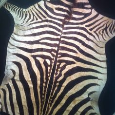 Someone please buy me this -.- !  #real #zebra #3000 #dollars Want to triple your $ $ $ $ like me? Click the link listed below and see for yourself.