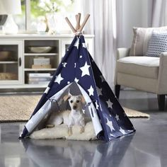 Merry Products Blue with White Stars Pet Teepee
