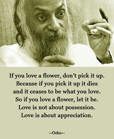 """Love is not about possession. Love is about appreciation."""