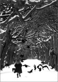 Child, birds, forest, snow...fantastic photo!