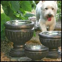 DIY Pet Feeder From Planters