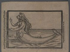 'A most strange and true report of a monstrous fish' Illustration from an early printed report of a Mermaid sighting, 1604 Mermaid Found On Beach, History Of Wales, Tarot, Fish Illustration, Visual Aids, Mermaids And Mermen, Deities, Folklore, Book Design