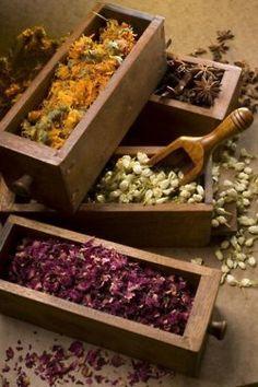 Adding dried herbs to your bath or body is great to open up your pores as well as your senses.