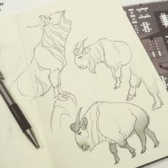 the first 12 days of Inktober!  I've been doing ungulates...
