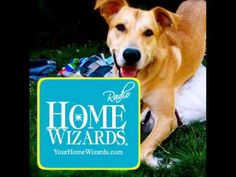 Remembering A Loved Lost Pet at Home - Tips from The Home Wizards Radio Show