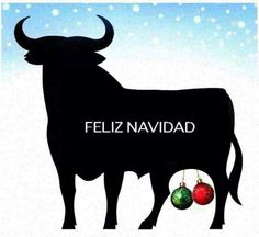 Xmas in Andalusia.