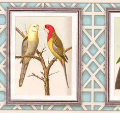 Wallpaper-Border-Echo-Home-Framed-Birds-Botanical-Border-Cream-Trellis-on-Blue