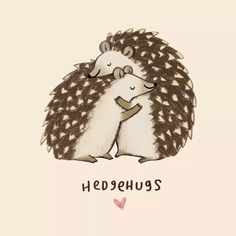 Hedgehugs by Sophie Corrigan Illustration