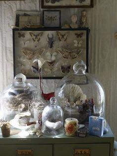 a display of antique shop