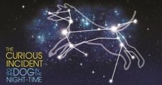 The Curious Incident of the Dog in the Night-Time at The Bristol Hippodrome