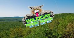 [Race Report] 2016 Wildcat Ridge Romp 50 Miler
