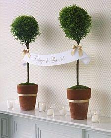 Mini träd / For the bride & groom - BröllopsGuiden