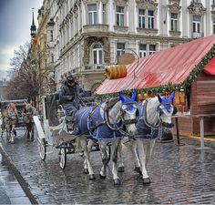 Christmas Dream in rainy Prague (Рождественский сон в дождливой Праге)