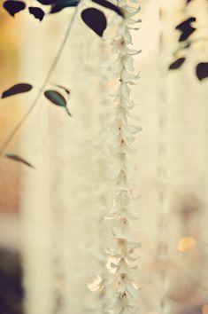 Photography: Tamiz Photography…