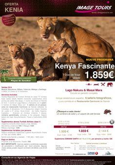 ÁFRICA- Kenya: safari Fascinante en PC: Lago Nakuru & 3 noches en Masai Mara desde 1.859€ ultimo minuto - http://zocotours.com/africa-kenya-safari-fascinante-en-pc-lago-nakuru-3-noches-en-masai-mara-desde-1-859e-ultimo-minuto-4/