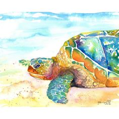 kauaiartist (€24) ❤ liked on Polyvore featuring sea turtle, turtle, watercolor painting, beach scene wall art, watercolour painting, white paintings and photo wall art