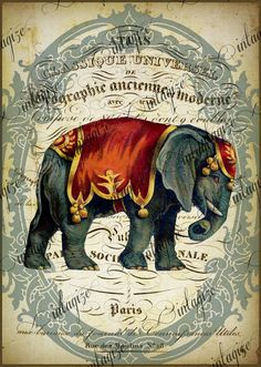 Instant Art Original Print French Circus Elephant by Vintagize