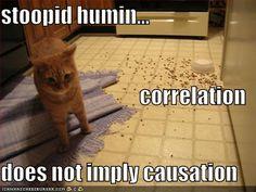 correlation jokes