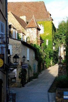 Verdure sur les murs ,Sarlat-la-Canèda,Aquitanien,France