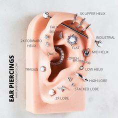 Which ear piercings do YOU want? ✨ - In the world of piercings, it's import. - Piercing und Co. Which ear piercings do YOU want? ✨ - In the world of piercings, it's import. - Piercing und Co. Piercing Chart, Ear Piercing Diagram, Ear Piercings Chart, Pretty Ear Piercings, Types Of Ear Piercings, Multiple Ear Piercings, Ear Piercing Names, Different Ear Piercings, Female Piercings
