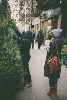 Choosing a tree is so much fun. Come on down to Toemar to pick yours. We have plenty to choose from :) Don't forget to bring the fam!