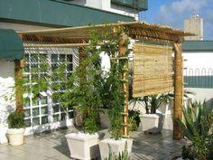 Fotos ilustrativas de pergolados utilizando bambu tratado                                                                                ...