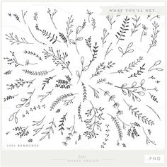 Branches Wreaths & Laurels Bunndle PNG Files by ShhMakerDesign