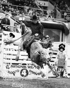 Photo of Lane Frost by Jerry Gustafson at Denver Colorado, January, 1988 Agriculture, Farming, Lane Frost, Bucking Bulls, 8 Seconds, Bull Riders, Denver Colorado, Cattle, Rodeo