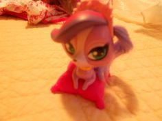 Littlest Pet Shop - FREE girls toy