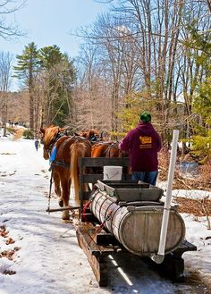 maple sugaring Maple Syrup Tree, Tapping Maple Trees, Shack House, Sugaring, Work Horses, Life Choices, Winter Landscape, Winter Scenes, Farm Life