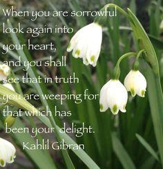 Look again . . .