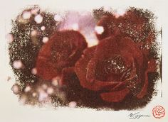 Flower of Rose where my signature and the stamp were in
