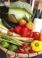 漬ける野菜の種類 | ぬか床手帳 | ぬか床販売専門店 千束(ちづか)